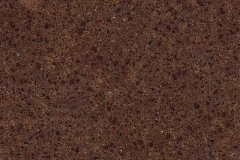 Saddle_Brown